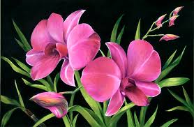 pink orchids royal pink orchids painting by nancy tilles
