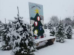 iowa christmas tree farms christmas lights decoration