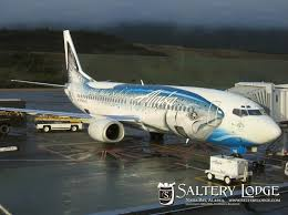 best airplane paint jobs we flew on this plane a couple commercial