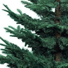 everlands 7ft nobilis fir artificial tree blue