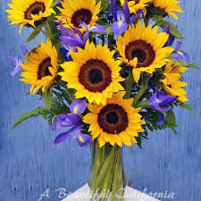 How To Take Care Of Flowers In A Vase Long Beach Florist Flower Delivery By A Beautiful California Florist