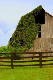Barns For Sale In Ma 738 Best Images About Barns On Pinterest Country Barns Country