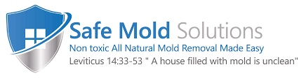 basement mold removal safe mold solutions chapter 2