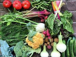fruit delivery dallas a guide to farm to door delivery services across the usa serious