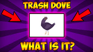 Meme Stickers For Facebook - know your meme trash dove pigeon what is it origins of trash