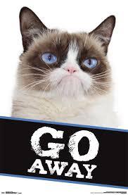 Grumpy Cat Mini Wall Calendar - cat go away