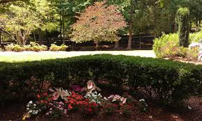 Tanger Family Bicentennial Garden Rvburg Community In Motion Visiting The Garden U0027s Of Greensboro Nc