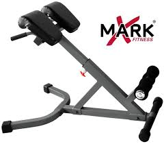 Good Workout Bench Xmark 45 Degree Hyperextension Bench Review