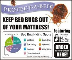 How To Get Rid Of Bed Bugs In Mattress 13 Best Pests Images On Pinterest 3 4 Beds Bed Bugs And Brewers