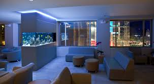 Double Sided Kitchen Cabinets by Small Modern Fish Tank