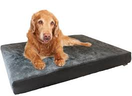 Best Dog Bed For Chewers Best Dog Beds For Large Dogs Ultimate Buying Guide Reviews 2017