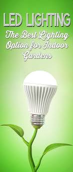 cfl grow lights for indoor plants led grow lights the best choice for indoor plants gardens led