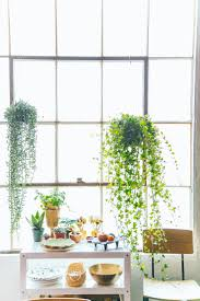 Jungalow Bohemian Decorating Ideas For Small Studio