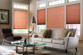 Pleated Blinds Honeycomb Cellular Pleat Blinds
