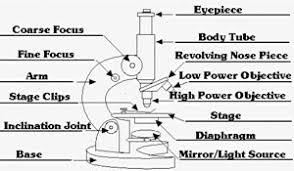labeled diagram of a microscope optics u0026 binoculars