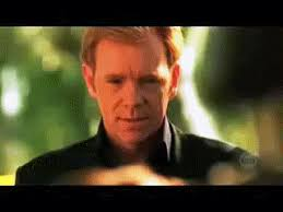 Horatio Caine Meme - horatio caine csi miami gif by doombeard find download on gifer