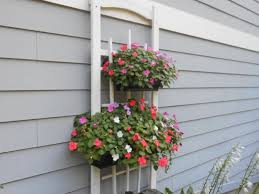Porch Rail Flower Boxes by Balcony Gardening Archives Gutter Gardens