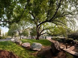 trees smithsonian gardens