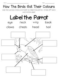 the birds got their colours mini unit printables u0026 worksheets