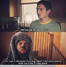 Wilfred Meme - 15 best wilfred images on pinterest movie tv comedy series and