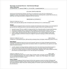 business resume format free business resume format best business resume format resume format