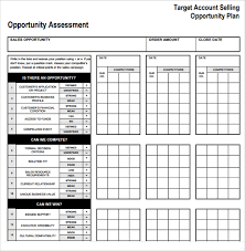 Target Account Selling Template sle account plan template 13 free documents in pdf word