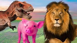 pig cartoons for children pig dinosaurs lion tiger fighting