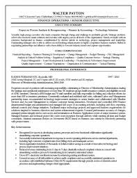Sample Cfo Resume by Cfo Resume Executive Summary Free Resume Example And Writing