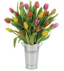 tulip bouquets tulip bouquets florists