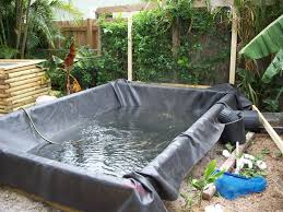 Building A Fish Pond In Your Backyard by Water Garden No Dig