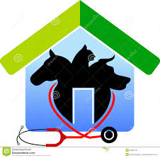 Shape Of House Stethoscope In Shape Of House Stock Vector Image 43791092