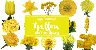 Wedding Flowers Guide Yellow Flowers Guide Featured On Confetti Day Dreams Budget