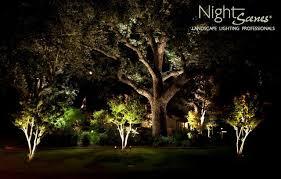 Landscape Lighting Ideas Trees Landscape Lighting Tropical Landscape By Nightscenes