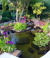 Backyard Garden Ponds Triyae Com U003d Beautiful Backyard Ponds Various Design Inspiration
