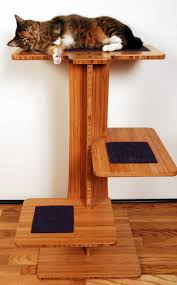 Cool Cat Furniture 137 Best Bamboo Images On Pinterest Bamboo Bamboo Design And