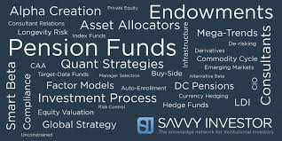 Risk Control Consultant Savvy Investor U201d An Instant Hit With Institutional Investors