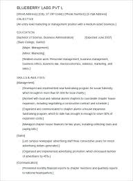 Resume Template On Word 2010 100 Microsoft Word 2010 Resume Template Download Litigation