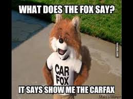 What Did The Fox Say Meme - we finally know what the fox really says what does the fox say
