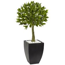 Flower Topiary Nearly Natural Bay Leaf Topiary With Black Wash Planter Uv