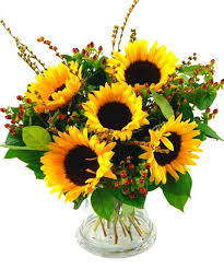 Vase Of Sunflowers Sunflowers In A Vase 7 Tips For Long Lasting Sunflowers A Fresh
