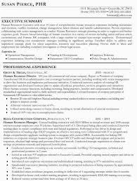 Hr Director Resume Sample by Download Executive Resume Writer Haadyaooverbayresort Com