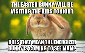 Funny Rabbit Memes - the easter bunny will be visiting the kids tonight does that mean