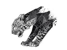 panther drawing by birgit palma dribbble