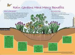 native plants extension master gardener garden rain u2013 jackson county master gardener association