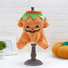 Cheap Dog Costumes Halloween Popular Dog Costumes Pumpkin Buy Cheap Dog Costumes Pumpkin Lots