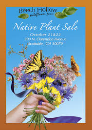 native plant sales scottdale flower salesbeech hollow farms