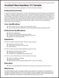 Core Qualifications Examples For Resume Sample Resume For Merchandiser Job Description Gallery