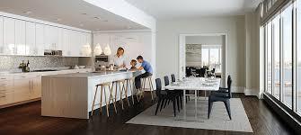 Kitchen Cabinets New York City Hervorragend Modern Kitchens Nyc Kitchen Cabinets Pleasant New