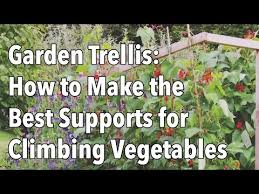 How To Make Trellis For Peas Building A Trellis Supports Peas Beans Cucumbers The Old