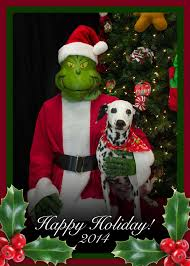 22 best happy holidays airpetsamerica images on
